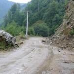 Cad bolovani pe Valea Oltului