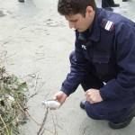 Centrul Ramnicului in pericol, din cauza unei munitii de razboi gasita intr-un tomberon