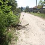 Condiţii de Ev Mediu pentru transport in Tetoiu